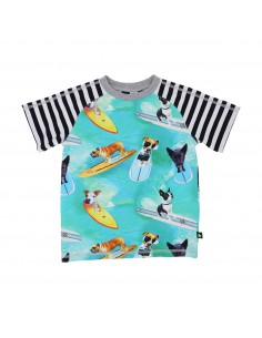MOLO: Rollo surf dogs jongens t-shirt